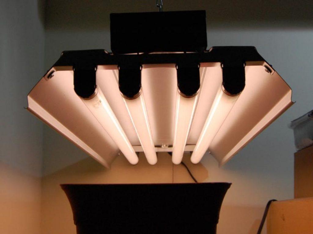 لامپ فلورسنت مهتابی